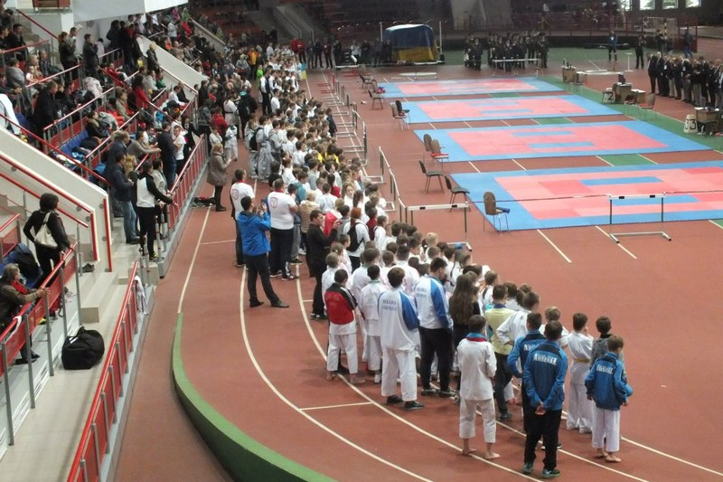 VIII open competition karate « Way to success 2016»